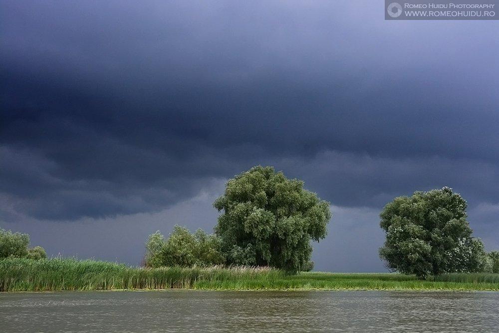 Furtuna in Delta Dunarii