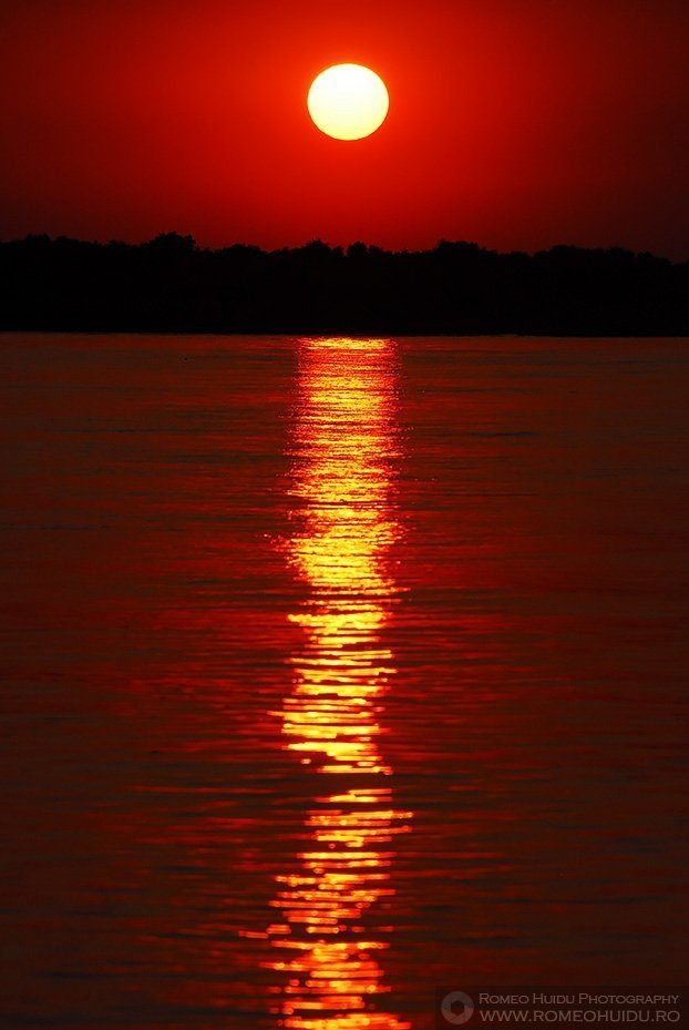 Danube Delta Sunset