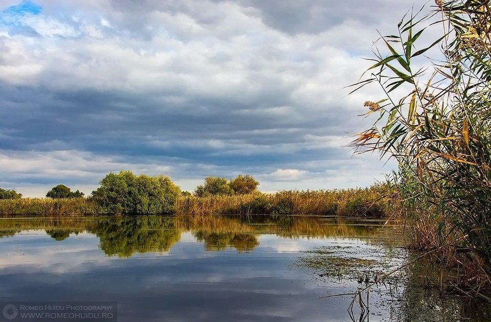 The autumn in Danube Delta